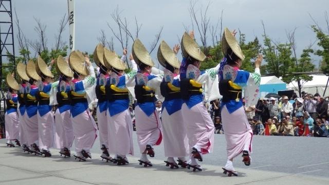 5四国の祭り.jpg