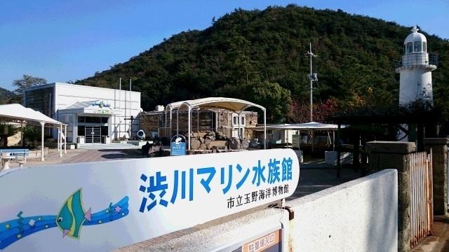 ①水族館玄関.jpg