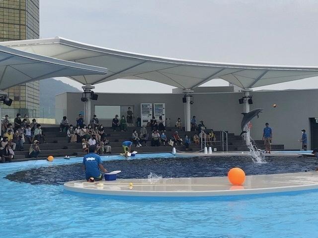 4海豚プール.jpg